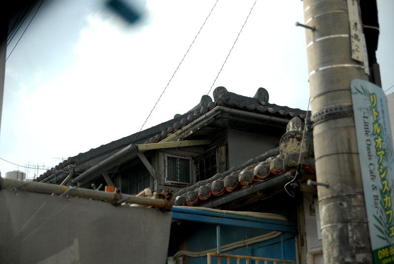 20070131-3.jpg